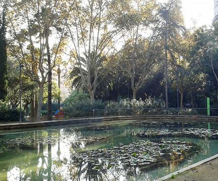 Vista de l'estany a mitjan novembre de 2015, sense els grans pollancres, que es poden veure a la fotografia destacada, de novembre de 2014. Fotografies de Pau Farràs i Jesús Mestre